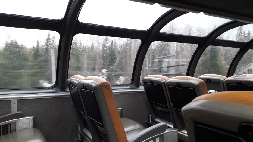 A 70s-style passenger dome on The Canadian: brown leather seats, a curved plexiglass roof, trees, telegraph poles and huts whooshing past outside.